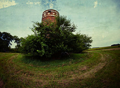leaning Silo (Dave Linscheid) Tags: farm rural country agriculture bricksilo texture textured summer tree abandoned decay old memories watonwan county mn minnesota usa 8mmrokinonlens fisheye