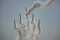 DSC05305 (Brian Wadie Photographer) Tags: twister arrows parachute wingwalkers