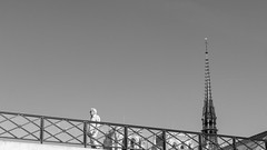 Walking in Paris (pepsamu) Tags: tower architecture arquitectura torre gothic gótico bridge people person gente walking walk monochrome monocormo 60d canon canonistas paris parís france francia street streetphotography pic bw wb bn notredame paseo travel travellers spire cathedral catedral