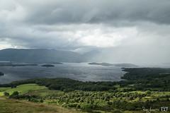 DN9A1669 (Josette Veltman) Tags: conichill lochlomond schotland scotland uk landschap landscape natuur nature visitscotland lake loch