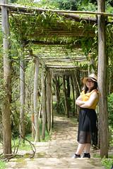_DSC6387 (Quyr) Tags: dalat vietnam green smoke frog cloud tree forest langbiang lamdong portrait thunglungvang duonghamdatset