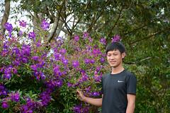 _DSC6698 (Quyr) Tags: dalat vietnam green smoke frog cloud tree forest langbiang lamdong portrait thunglungvang duonghamdatset purple wood man duonghamdieukhac