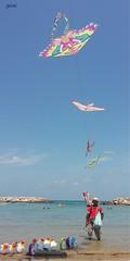 growing wings (gicol) Tags: cielo mare sea ocean kites aquilone cometa pipa venditore seller beach spiaggia playa floaters salvagente pinguino gallegiante campodimare brindisi br puglia apulia italia italy