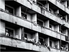 Inner City Life (Finepixtrix) Tags: mono bw johannesburg innercity urbandecay sony rx10 cybershot bridgecamera