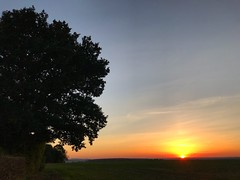 Countryside Sunset (Marc Sayce) Tags: sundown sunset countryside fields ropley soke four marks hampshire summer autumn september 2018
