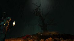 Tree in a Cave | The Witcher 3: Wild Hunt (UraniumRailroad) Tags: thewitcher3wildhunt witcher wildhunt geralt tree cave torch