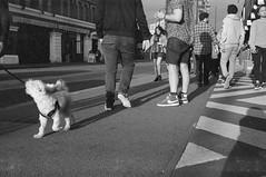Walkies (emptyvessal) Tags: 1600 contaxrx hp5 carlzeiss variosonar3570mm london streetphotography hp5plus city uk