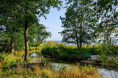 Lahemaa National Park (Nezgsy) Tags: baltics estonia lahemaanationalpark altja läänevirumaakond ee