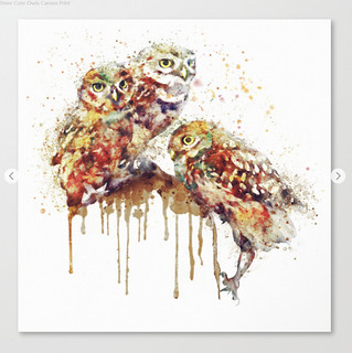 Three Cute Owls Canvas Print