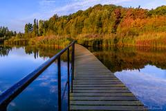 Through the polder (cstevens2) Tags: belgique belgium belgië europe flanders flandre kortbroek kruibeeksepolders kruibeke morning oostvlaanderen polder vlaanderen landscape landschap herfst autumn