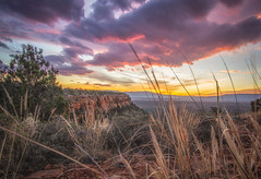 Sunset in Sedona (Amazing Aperture Photography) Tags: nature outside outdoors sunrise sky clouds horizon light lighting sun beautiful colorful bright vivid arizona sedona pink purple doemountain plants brush foliage redrocks sony sonya6000 rokinon landscape sunset