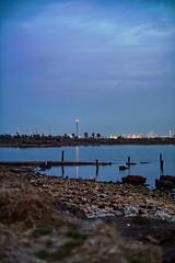 Unidos por la costa - Bahía Blanca (david m busto) Tags: costa bahíablanca bahía ambiental ambientalismo speedway motocross municipalidad conflicto aves migración migratoria universidadnacionaldelsur hectorgay cambiemos medioambiente