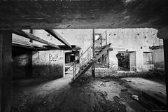 Meißen Alte Ziegelei b&w 5 (rainerneumann831) Tags: meisen alteziegelei industrieruine lostplace bw ©rainerneumann treppe blackwhite blackandwhite
