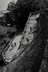 1159 steps (hayavuk) Tags: shizuoka kunozan staircase stonestairs stone steps blackandwhite climbing japan fujifilm fujix70