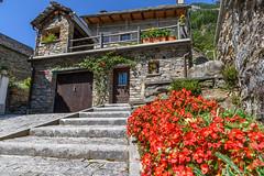 Valle Verzasca 2018 - Sonogno (karlheinz klingbeil) Tags: suisse sognono swissalps schweiz flower switzerland stadt city alpen blumen sonogno tessin ch
