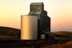 Evening Light (garshna) Tags: palouse grainelevator sunset windows fields fence grass