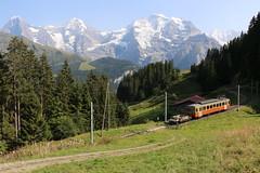 2018-08-28, BLM, Grütschalp (Fototak) Tags: schmalspurbahn treno train railway switzerland jungfrauregion berneroberland blm 31
