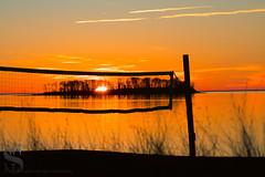 golden hour_ (Singing With Light) Tags: 2016 2017 20th alpha6500 ct charlesisland duckpond february milford mirrorless singingwithlight a6500 beach photography singingwithlightphotography sony sunrise walnutbeach winter