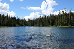 Time for a return swim (rozoneill) Tags: indigo lake sawtooth mountain willamette national forest cowhorn middle fork river oregon hiking