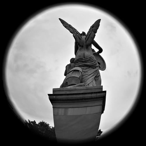 365_Day 237 Angel