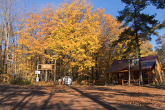 (Theresa Best) Tags: autumn cabin logcabin northwoods wisconsin travel wanderlust bar trees adventure canon canon760d canont6s colorful theresabest