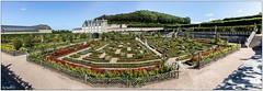 Panorama du château et de son potager (didier_chantal49) Tags: architecture chateau indreetloire jardin parc villandry france fr