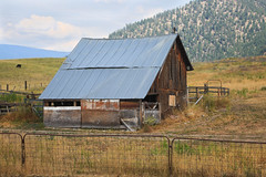 Slope Roofed Barn (BP3811) Tags: 2018august building farm montana old rural superior barn cow fence field