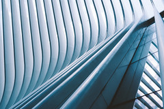 World Trade Center Transportation Hub (Thomas Ohlsson Photography) Tags: architecture fujifilmxt2 fujinonxf1855mmf284rlmois newyork santiagocalatrava thomasohlssonphotography wtc worldtradecenter worldtradecentertransportationhub