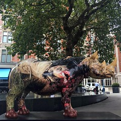 Tusk Rhino Trail (brimidooley) Tags: tuskrhinotrail rhinoceros art publicart london uk england greatbritain