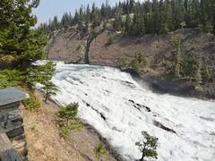 Bow River Falls, Banff, Alberta, Canada (dannymfoster) Tags: canada alberta banff park nationalpark banffnationalpark bowriver bowriverfalls