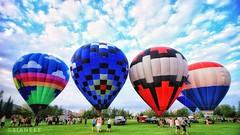 Duluth Rising Hot Air Balloon Festival (Sianeee18) Tags: balloons hotairballoons duluthrising hotairballoonfestival bayfrontpark duluthminnesota duluthmncityparks duluth lakesuperior