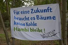 Soligrüße an den Hambi