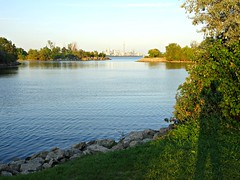 I can see the C N Tower (Trinimusic2008 -blessings) Tags: trinimusic2008 judymeikle nature today september 2018 evening light toronto to ontario canada sonydschx80 humberbayparkw lake lakeontario water reflections shadows shadowselfie cntower
