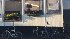 Bikes are everywhere (tom.too) Tags: bikes club revalerstrasse berlin gesicht blumen strange