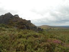 DSCN5720 (norwin_galdiar) Tags: bretagne brittany breizh finistere monts darrée nature landscape paysage
