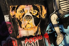 EZP_2138 boulevard du Général Jean Simon Paris 13 (meuh1246) Tags: streetart paris boulevarddugénéraljeansimon lelavomatik paris13 animaux ezp chien
