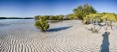 80 miles beach (nobilefamily) Tags: lagrange westernaustralia australie