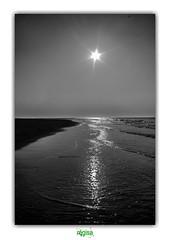 STAR OF LAND AND SEA, LEAD ME (régisa) Tags: star étoile shine briller theinnocencemission sable sans seaside diguedubreak dunkirk dunkerque