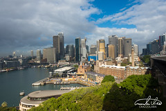 Sydney Skyline (Theo Crazzolara) Tags: sydney australia australien newsouthwales backpacking travel traveling city skyline buildings architecture