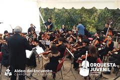 FOTO_ORQUESTA_ANIVERSARIO-12