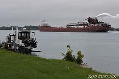 hjlo82218astnscn_rb (rburdick27) Tags: scenicmichigan honjamesloberstar stclairriver interlake interlakesteamshipcompany freighter