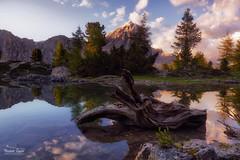 Lago Limides-Dolomiti (ric.gayan) Tags: