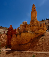 Bryce Pickaboo trail (swissuki) Tags: bryce brycecanyon picabootrail nature landscape brycenationalpark