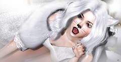 Rawrrrrr (meriluu17) Tags: glamaffair foxcity sintiklia kitty cat rawr fantasy neko girl cute kawaii sweet people portrait white pure