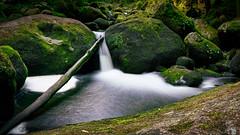 Wasser im Fluss (Jensens PhotoGraphy) Tags: deutschland de germany badenwürttemberg landschaft landscape langzeitbelichtung natur nature wasser water wasserfall grün green schwarzwald fluss river bach steine moos