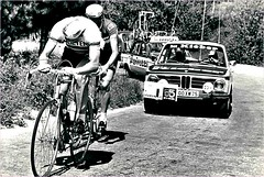 1972 GIRO Eddy Merckx and Gösta Petterson (Sallanches 1964) Tags: giroditalia 1972 roadcycling gostapetterson eddymerckx worldchampionroadcycling
