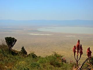 3309ex Ngorongoro Crater from the rim