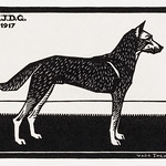 Dog (1917) by Julie de Graag (1877-1924). Original from the Rijks Museum. Digitally enhanced by rawpixel. thumbnail