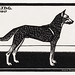 Dog (1917) by Julie de Graag (1877-1924). Original from the Rijks Museum. Digitally enhanced by rawpixel.
