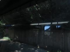 IMG_8285 (Andy E. Nystrom) Tags: bellevue washington wa bellevuewashington
